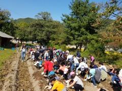 안덕마을 농작물 수확체험